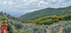 A magic Tuscan country house in the wilderness with breathtaking views from the top of the hills around Lucca. Dream Properties, Nature Reserve, Stunning View, Lucca, Villas, Tuscany, Wilderness, Acre, Woodland