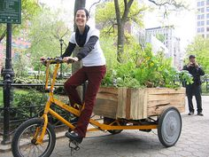 Heroines for the Planet: Marielle Anzelone: http://eco-chick.com/2011/12/9219/heroines-for-the-planet-nyc-botanist-and-urban-ecologist-marielle-anzelone/