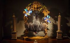 Darwin's Menagerie: taxidermy takes flight Darwin's Menagerie by Dutch duo Sinke & van Tongeren, an exhibition at Jamb antiques showroom, elevates taxidermy to a fine art