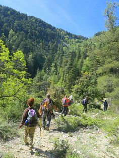 Member of the Utah Conservation Corps Bilingual Youth Corps hike to White Pine Lake in Logan Canyon. (Photo by Eli Lucero) Mountain Trails, Beautiful Places In The World, Go Camping, Places To Visit, Hiking, Adventure, Mountains, Nature, Hammocks