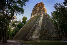 Nascosta dalla giungla – Tikal | Café des Arts