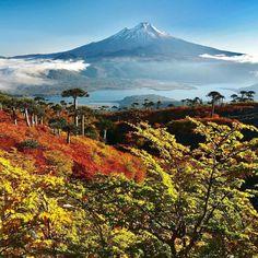 🇨🇱 El Llaima es uno de los volcanes más activos de Chile y tiene erupciones frecuentes pero moderadas. La actividad de Llaima se ha… Sierra Nevada, Gaia, Mount Rainier, Travel Destinations, Beautiful Places, National Parks, Mountains, Instagram, Exterior