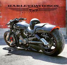 Harley Davidson Scrambler, Motos Harley, Harley Bikes, Harley Davidson Motorcycles, Concept Motorcycles, Cool Motorcycles, Bobber Motorcycle, Motorcycle Design, Custom Street Bikes