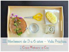 Nuevo curso online Montessori de 3 a 6 años - Vida Práctica • Montessori en Casa