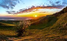 Дикая яблоня на склоне Стрижамента. by Фёдор Лашков on 500px