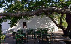 """""""O Platanos"""" à Mylopotamos, Cythère, pour dîner sous les arbres."""