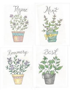 Spring vignette with botanical hand-drawn prints, with 4 free printables of herbs: Mint, Thyme, Basil, and Rosemary.