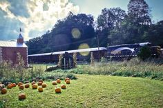 The Pumpkin Patch Train Ride In North Carolina That's Perfect For A Fall Day Fort Bragg North Carolina, North Carolina Homes, Couples Vacation, Vacation Ideas, Best Pumpkin Patches, Scenic Train Rides, It's The Great Pumpkin, Weekends Away, Great Smoky Mountains
