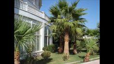 DREAMS TOUR Hotel Sempati  Северный Кипр