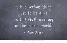 """It is a serious thing just to be alive"" -Mary Oliver"