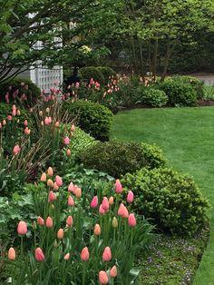 50 Beautiful Flower Garden Design Ideas – Home/Decor/Diy/Design - Gartengestaltung Garden Shrubs, Diy Garden, Garden Cottage, Spring Garden, Shade Garden, Patio Plants, Garden Gate, Garden Tips, Amazing Gardens