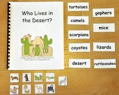 Who Lives in the Desert Adapted Book--Focuses on desert themed vocabulary words and pictures. Early Learning Activities, Science Activities, Preschool Activities, Animals Live In Desert, Desert Crafts, File Folder Activities, Classroom Inspiration, Busy Book, Vocabulary Words