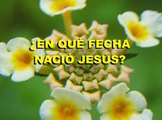 ¿EN QUÉ FECHA NACIÓ JESÚS?