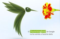¿Miedo al Colibrí de Google? http://www.globomarketing.es/blog/index.php/algoritmo-google-hummingbird-colibri/