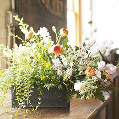 Living Arrangement. Plant + Cut flowers!