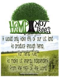 The many ways hemp can be used--it is idiotic that hemp is illegal to grow in the U.S.