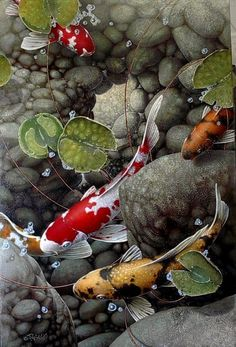 """The Light at the End."" painting by Terry Gilecki Koi Art, Fish Art, Koi Painting, Goldfish Pond, Koi Fish Tattoo, Beautiful Fish, Water Lilies, Stone Art, Art Images"