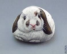 PAINTED ROCK RABBIT - Google Search