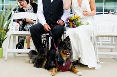 I cant get enough of adorable pups at weddings! Photograph by Cory Ryan Photography http://www.storyboardwedding.com/austin-texas-desert-oasis-inspired-wedding-with-vibrant-hues-under-the-stars-reception/