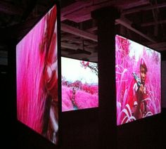 2013 Venice Biennale - Richard Mosse for Ireland - The photographers signature infra red technique was presented in massive photos and a complex video installation. A stunning assault on the senses. Richard Mosse, Video Installation, Downtown Toronto, Venice Biennale, Congo, Art Music, Photographers, Red, Photos
