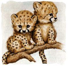 leopardinhos