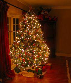 "xmasbells:  ""  A Jewel of A Christmas Tree by Susan Vineyard  Via Flickr:  """