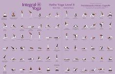 Integral Yoga Hatha Level 2 Poster