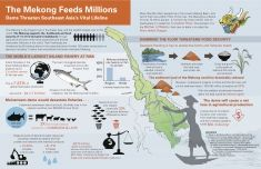 This infographic, from the December 2014 issue of World Rivers Review, shows how the Mekong River supports the world's largest inland fishery and productive farms, and the risks that a large-dam boom pose to the food systems the river provides.