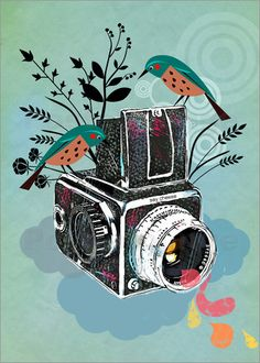 Vintage Kamera mit Vögeln