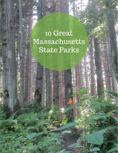 10 great Massachusetts state parks -- perfect for fall hikes!