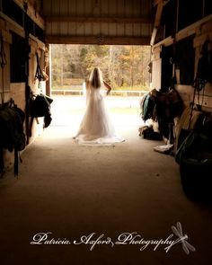 weddingplans: trash the dress session with my horse
