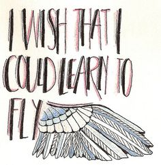 I wish that I could learn to fly.