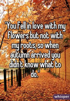 You fell in love with my flowers but not with my roots, so when autumn arrived you didn't know what to do.