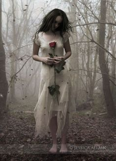 The Last Rose by EnchantedWhispers.deviantart.com on @deviantART
