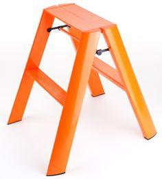 Hasegawa Ladders