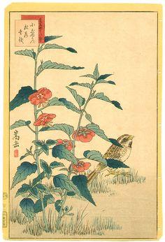 Nakayama Sugakudo  Title:Sparrow and Flowers  Date:1859.