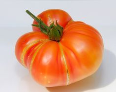 Texas Star    |  Color: Bi-color    |  Shape/Size: Round, large    |  DTM: 85    |  Description: Excellent bi-color beefsteak Types Of Tomatoes, Tomato Types, Tomato Garden, Vegetable Garden, Texas Star, Farmers Only, Organic Gardening Tips, Fresh Fruits And Vegetables, Beef Steak