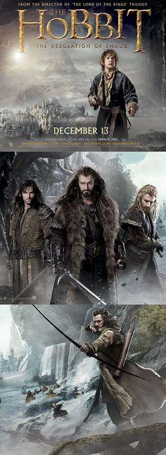 Lo Hobbit: La Desolazione di Smaug #LoHobbit #DesolazionediSmaug #TheHobbit #Hobbit