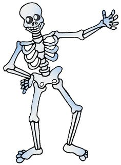 Skeletons - Free Science Lesson Plans, Activities, Powerpoints, Interactive Games