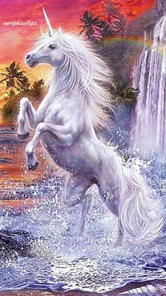 Fantasy Diamond Painting Kits that include Fairies and Dragons and all things fantasy. Unicorn And Fairies, Unicorn Fantasy, Unicorns And Mermaids, Unicorn Horse, Unicorn Art, White Unicorn, Beautiful Unicorn, Beautiful Horses, Magical Creatures