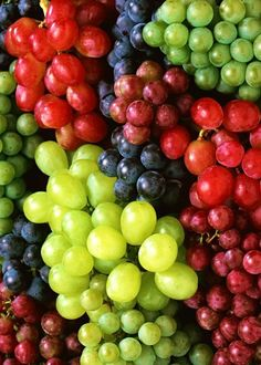 Grapes of different colors