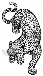 Awesome leopard tattoo idea.  Would like this turned into a snow leopard