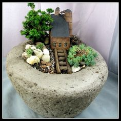 Little Fairy Garden in a pot,..... Great for a shady spot in the garden for the children to discover.