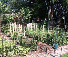 Garden Rant