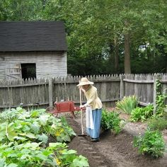 FARM: An interpreter prepares soil for planting beans. Yorktown Battlefield, Continental Army, Planting, Wonders Of The World, Victorious, Virginia, Beans, Places To Visit, Gardens