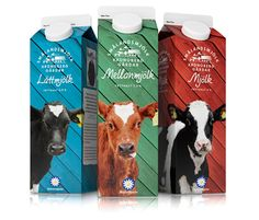 colorful cow milk packaging PD