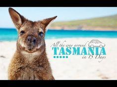 15 DAYS ROAD TRIP TASMANIA - BEST JOB IN THE WORLD TOUR 2014 - YouTube