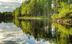 Finland! The land of a thousand lakes! Taken at Hiidenportti National Park, Sotkamo Simon Lambert