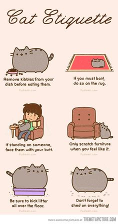 The Cat Etiquette