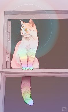 Phazed third eye cat rainbow